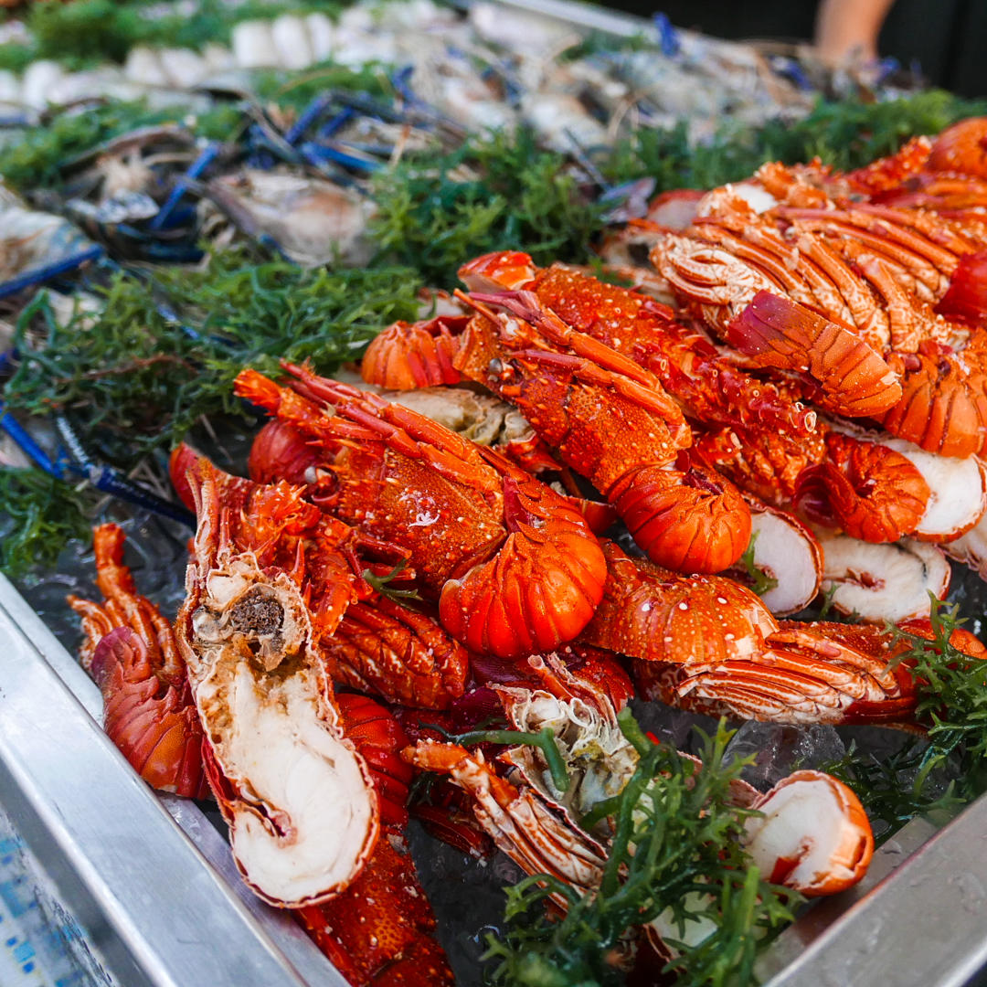 Lobster Pitik